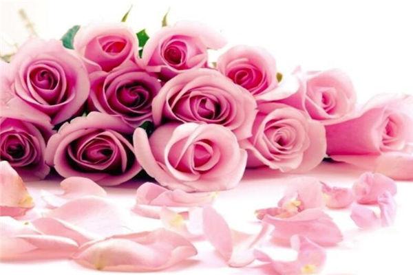 生日送什么鲜花,闺蜜生日送什么鲜花